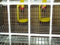 Клетка для перепелов КП-30 М